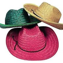 Fun Express Adult Assorted Straw Cowboy Hat (1 Dozen) Photo