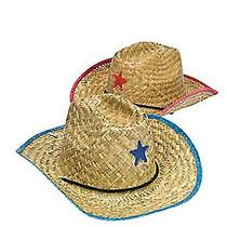 Fun Express Adult Cowboy Hat With Star (1 Dozen) Photo
