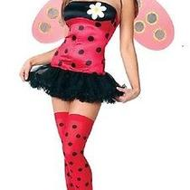 Fun World Fantasy Leggy Ladybug Womens Costume   S/m 5137 Photo