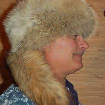 Fur Hat Coyote Fur With Tail Trapper Costume Daniel Boone Hat Cap Fess Parker  Photo