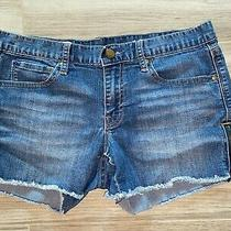 Gap 1969 Cut Off Raw Edge Zipper Detail Shortie Summer Shorts 3 Inseam Sz 28/6 Photo