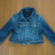 Gap 1969 Traditional Classic Toddler Blue Denim Jacket 12-18 Months Photo