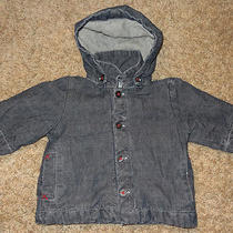 Gap Baby Boy Hoodie Jacket Size 3-6 Months Photo