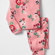 Gap Baby Girls Size 6-12 Months Pink Roses / Floral 2-Piece Pajama Pj Set Photo