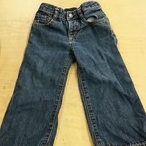 Gap Baby/toddler Boy 18-24 Mths Blue Denim First Original Jeans Pants Elastic Photo