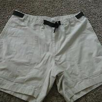 Gap Belted Shorts - Size L Photo
