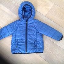 Gap Blue Light Quilted Coat Sz 4 Photo