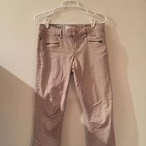 Gap Fitted Pettle Pusher Khakis  Photo