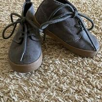 Gap Gray Suede Size 6c Toddler Chukka Boots Photo
