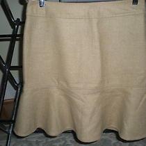 Gap Heathered Camel Fluted Wool Skirt -4- Nwt Photo