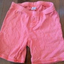 Gap Kids 10 Polka Dot Knit Shorts Photo