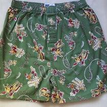 Gap Kids Boys Green Boxer Shorts Xxl 14 16 Retro Vtg Cowboys Western States Y2k Photo