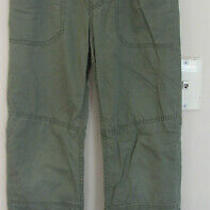 Gap Kids Boys Size L Green Everyday Jersey Lined Pants Guc Photo