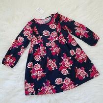Gap Kids Girl's Size 5 Floral Flannel Long Sleeve Ruffled Dress Navy Blue Pink Photo