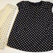 Gap Kids Girls American in Paris Black Ivory Polka Dot Dress Tights Set Fall 6 7 Photo