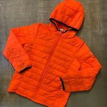 Gap Kids Lightweight Puffer Jacket W/ Hood  Orange  Size L/10 Photo
