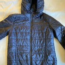 Gap Kids Navy Blue Winter Prima Jacket With Hood. Great Condition. Size 10  12 Photo