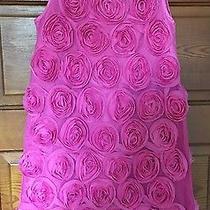 Gap Kids Pink Rose Dress Xl 12 Summer Wedding Party Dress Photo