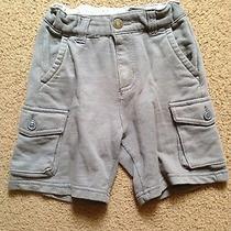 Gap Knit Cargo Gray Shadow Boys Shorts Size 2t Photo