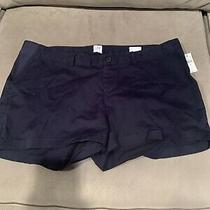Gap Maternity Navy Blue Summer Shorts Size 14 Photo