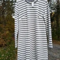 Gap Maternity Nwt Striped Dress Medium - Gray White Fitted Darts Photo