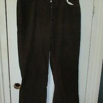 Gap Men's Sz 36 X 30 Boot Fit Button Fly Dark Brown Corduroy Dress Pants Photo