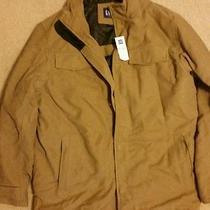 Gap Men's Winter Coat Photo