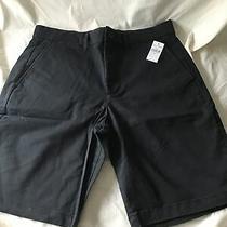 Gap Mens Black Shorts 30 With 10 Inseam Photo