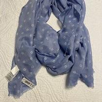 Gap Nwt - Blue and White Sheer Soft Scarf 78x24 Photo