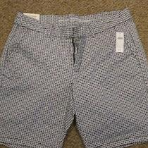 Gap Shorts Photo