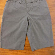Gap Size 1 Gray Pinstripe Bermuda Shorts Photo