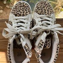 Gap Sneakers Girls Lepoard  Photo
