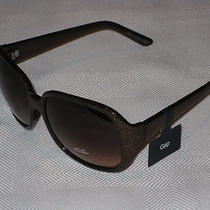 Gap Sunglasses Brown Frame & Lens  New With Tag Uva Uvb Protection Photo