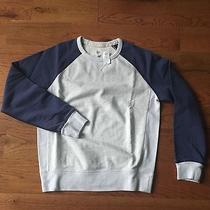 Gap Sweatshirt Medium Blue & Ivory         New With Tags Photo