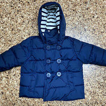 Gap Toddler Boys Puffer Coat Size 12-18 Months  Photo