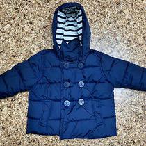 Gap Toddler Boys Puffer Coat Size 12-18 Months  Photo
