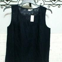 Gap Top Size M Blue  Sleeveless Nwt  Blouse Shirt Women's Photo