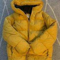 Gap Unisex Girls and Boys Winter Puffer Jacket Yellow Size M Photo