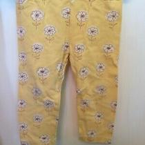 Gap White Flower Print Yellow Pants 12-18m Girl Toddler Baby Photo