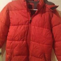 Gap Winter Coat Photo