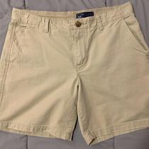 Gap Women's Size 8 Tan Khakis Shorts Photo