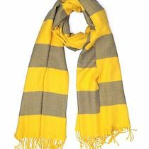 Gap Women Yellow Scarf One Size Photo