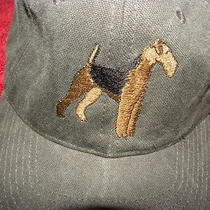 Generic Dog Hat Washed Fabric  Faded Vintage Look Supreme Thrasher Cats Zara Photo