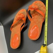 Gently Worn Used Coach Flower Sandals Exc Condition Size 9 Orange Cool Classy Nr Photo
