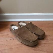 Genuine Mens Ugg Australia Alamar Slip on Slippers Chestnut Size 11 New Photo