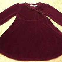 Girl Size 24 Mo Dress Burgundy Red Holiday Velour Winter Formal Dress Camilla Photo