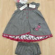 Girls 6 Months Petit Lem Gray Pink Chambray Dress Bloomers & Socks Nwt 37 Photo