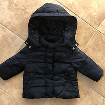 Girls Baby Gap Navy Blue Toddler Waterproof Quilted Coat Jacket 12-18 Months 1yr Photo