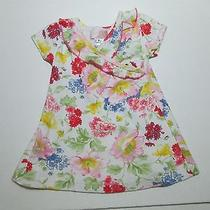 Girls Baby Lulu Los Angeles Pink Blue & Yellow Floral a-Line Shift Dress Sz 9 M Photo