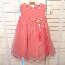 Girls Bonnie Jean 3t Fancy W/flower and Tool Overlay Formal Party Dress Photo